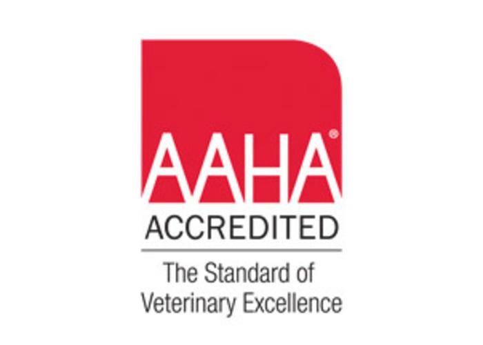 Mesa Veterinary Hospital image