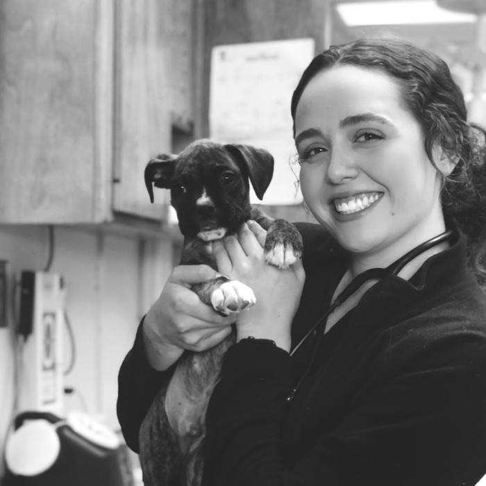 Jordan Hester </br> Registered Veterinary Technician photo