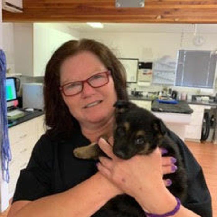 Benna Pilkington</br> Veterinary Assistant  photo